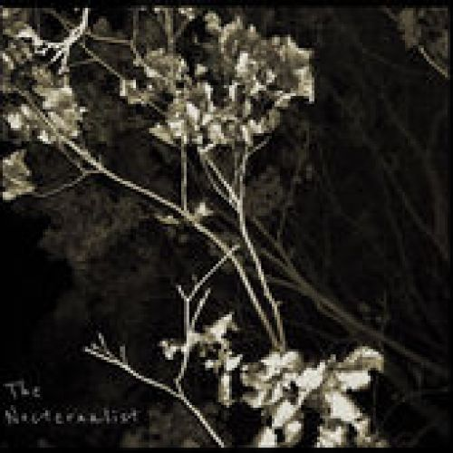 Dusty Shags - The Nocternalist,  Album Cover Art