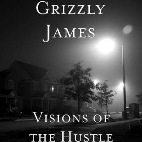 Grizzly James – Visions of the Hustle: Music
