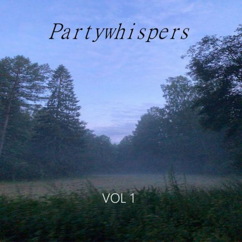 Partywhispers - Notice me.,  EP Cover Art