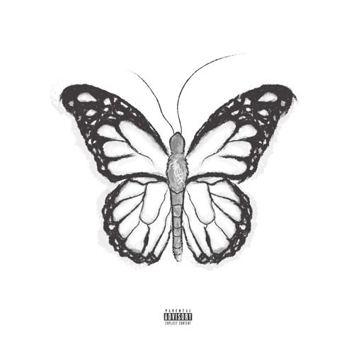 naldooo - NIGHTBUTTERFLY,  Mixtape Cover Art